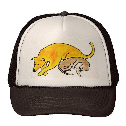 CAT & DOG HAT
