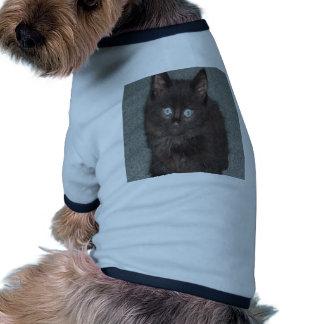 CAT PET T SHIRT