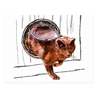 cat door postcard