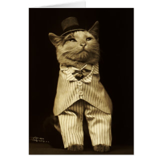 Cat Dressed up from 1906 Vintage Greeting Card