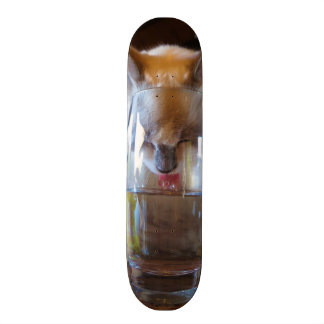 Cat Drinking a Glass of Water Skateboards