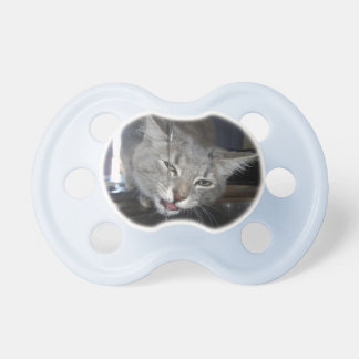 Cat,_Drinking From Kitchen_Tap,_Babys_Dummy Pacifier