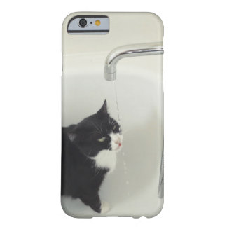 Cat Drinking Water Dripping From A Tap Barely There iPhone 6 Case