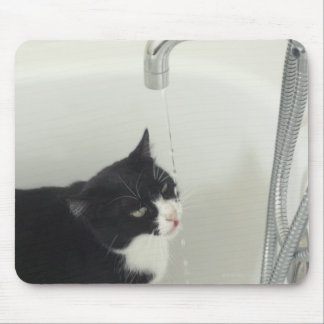 Cat Drinking Water Dripping From A Tap Mouse Pad