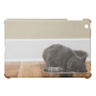 Cat eating from bowl cover for the iPad mini