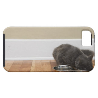 Cat eating from bowl iPhone 5 cover