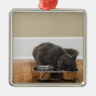 Cat eating from bowl Silver-Colored square decoration
