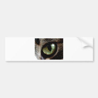 Cat Eye Bumper Stickers