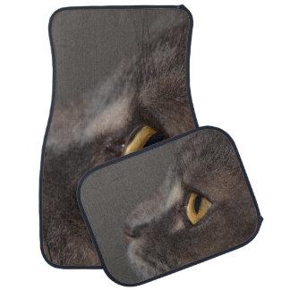 Cat Eye-Macro by Shirley Taylor Floor Mat