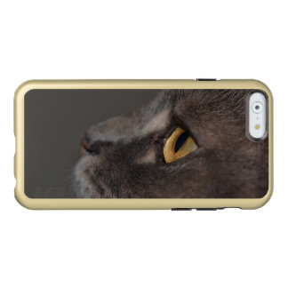 Cat Eye-Macro by Shirley Taylor Incipio Feather® Shine iPhone 6 Case