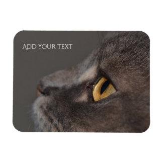 Cat Eye-Macro by Shirley Taylor Rectangular Photo Magnet