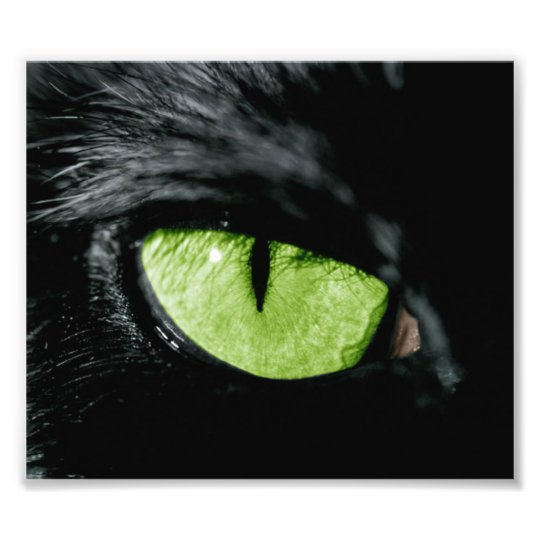Cat eye photo print