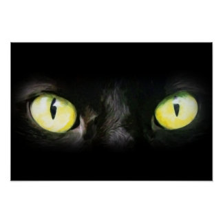 Cat Eyes, Black and Yellow Stare Poster