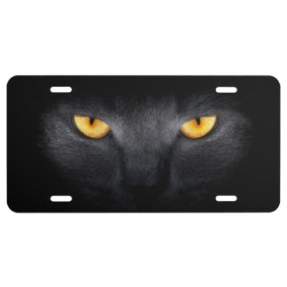 Cat Eyes License Plate