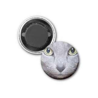 Cat Eyes Magnet