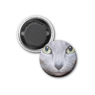 Cat Eyes 3 Cm Round Magnet