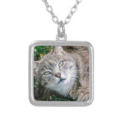 Cat Eyes Necklace