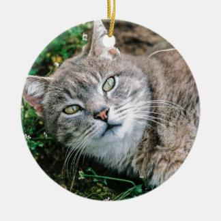 Cat Eyes Round Ceramic Decoration