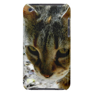 Cat eyes stare iPod touch Case-Mate case