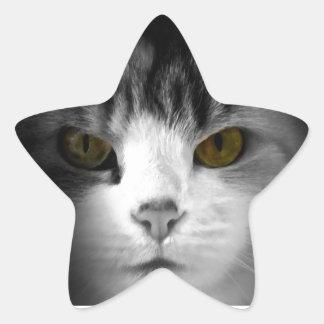 Cat Eyes Stickers