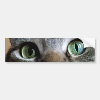 Cat Eyes Sticker Car Bumper Sticker
