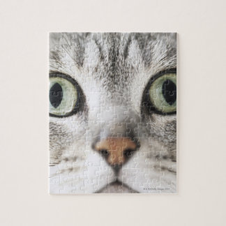 Cat face jigsaw puzzle