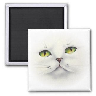 cat face square magnet