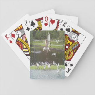 Cat flying a Seagull Playing Cards