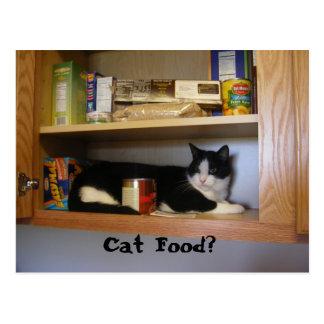 Cat Food? Postcard