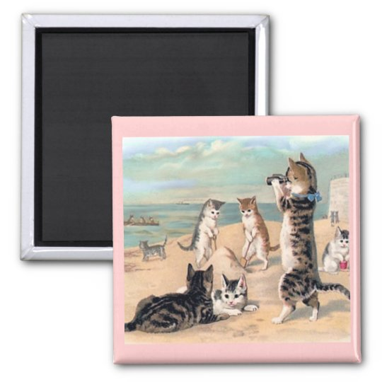 Cat Fun at the Beach Magnet