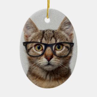 Cat geek christmas ornament