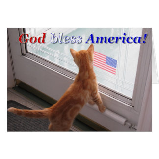 Cat greeting card for patriotic holidays