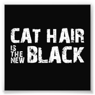 Cat Hair is the New Black Photo Print