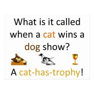 Cat-has-trophy Postcard