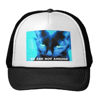 Cat Hat: we are not amused Cap