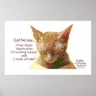 Cat he Say - Nursing School Sleep Deprivation Poster