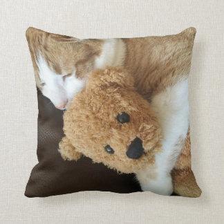 Cat holds old teddy bear cushion