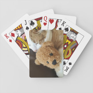 Cat holds old teddy bear playing cards