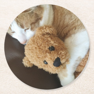Cat holds old teddy bear round paper coaster