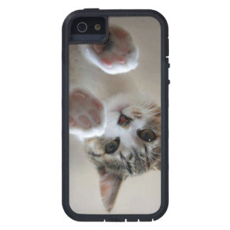 cat housing case for iPhone 5