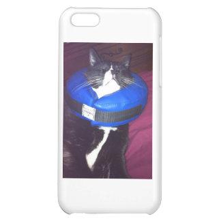 Cat Humor iPhone 5C Cover