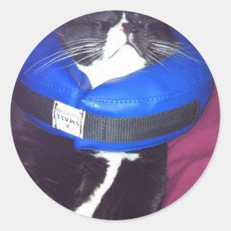 Cat Humour Round Sticker