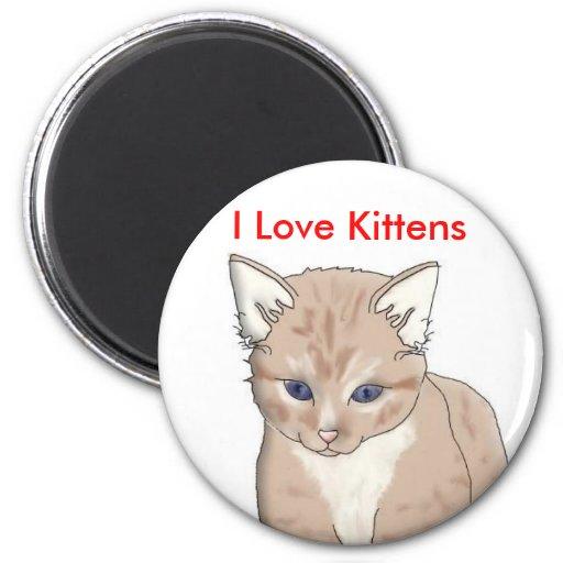 cat, I Love Kittens Fridge Magnet