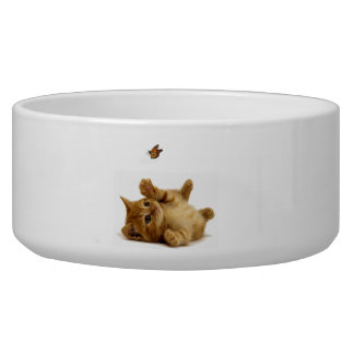 Cat image for Large Pet Bowl
