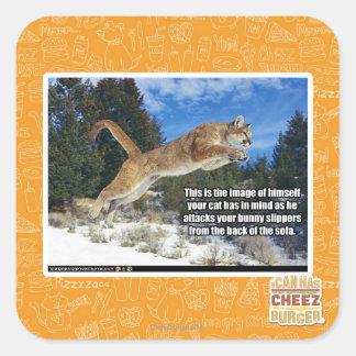 Cat image square sticker