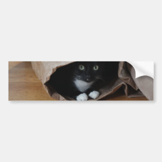 Cat in a bag 2 bumper sticker