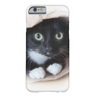 Cat in a bag barely there iPhone 6 case