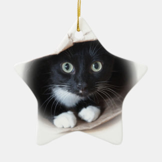 Cat in a bag christmas ornament