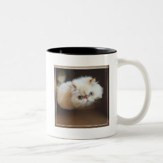 Cat In A Box Two-Tone Coffee Mug