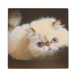 Cat In A Box Wood Coaster